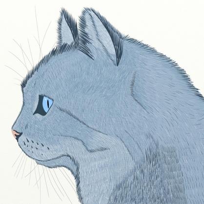 1-Cat-sketch
