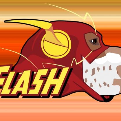 Ermis-Flash